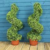 Garden Best Buys - Coppia di cespugli artificiali a spirali, alti 80 cm, per interni ed esterni immagine