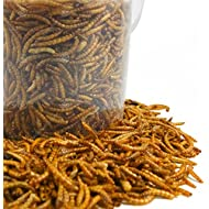 GardenersDream Dried Mealworms Mix - High Quality Wild Bird Food Large Variety (5L Tub)