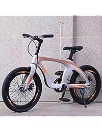 WN-PZF Bicicleta de 20 Pulgadas de una Velocidad, Deportes al Aire Libre para Estudiantes Adultos, Material de aleación de magnesio + Frenos de Disco Doble + neumáticos a Prueba de explosiones