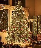 Kupferdraht Lichterkette SOLMORE 10M 100 LEDs Batterie mit Timer und Fernbedienung Wasserdichte Warmweiß String Lights für DIY Festival Weihnachten, Hochzeit, Party