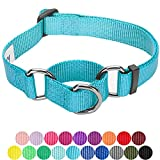 Blueberry Pet Sicherheitstraining Martingale Hundehalsband Klassisch Einfarbig 2,5 cm L Basic Nylon Hundehalsband Langlebig - Mittel-Türkis