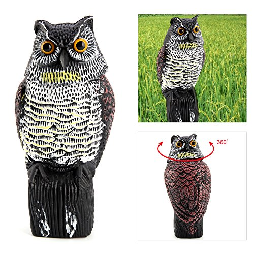allright-realistic-owl-wind-action-fake-owl-decoy-crow-scarer