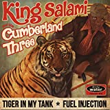 Tiger in My Tank [Vinilo]