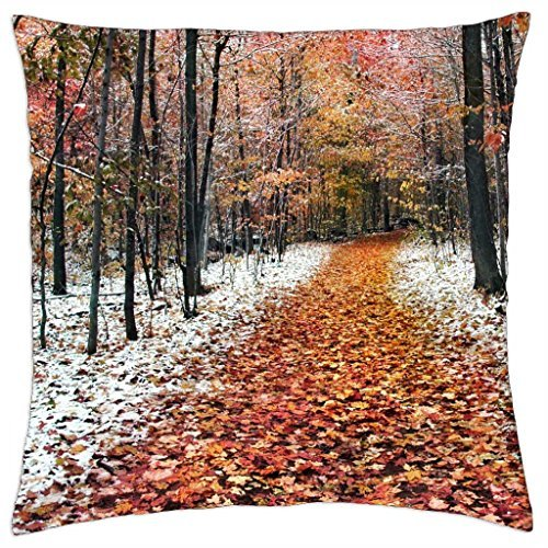 forest-in-two-seasons-winter-and-fall-throw-pillow-cover-case-18