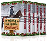 #7: IT'S BEGINNING TO LOOK A LOT LIKE COWBOYS (COLLECTION Book 2)