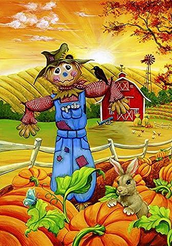 Toland Home Garden Scarecrow Buddies 12.5 x 18-Inch Decorative USA-Produced Garden Flag