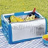 Sunware 57200611faltbare Kiste mit Doppelgriff und Kühltasche, 32l