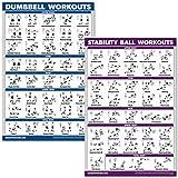 QuickFit Kurzhanteltraining und Übungsball Poster-Set - laminiertes 2 Diagramm-Set -...
