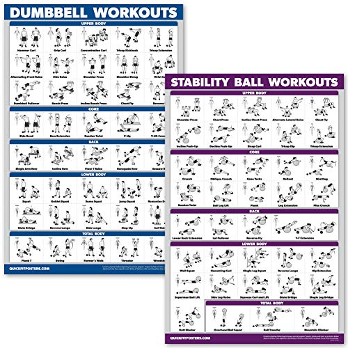 QuickFit Kurzhanteltraining und Übungsball Poster-Set - laminiertes 2 Diagramm-Set - Kurzhantelübung & Stabilität/Yoga-Ball Workouts, Laminated, 18