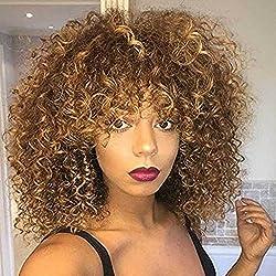 Pelucas sintéticas rizadas Afro para las mujeres negras Peluca rizada rizada rizada marrón corta Peluca Fluffy del aspecto natural a prueba de calor completa con el casquillo de la peluca