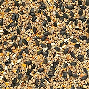 10KG WILD BIRD FOOD SOLD BY MALTBY'S CORN STORES (EST 1904)