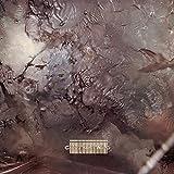 Head Over Heels [Vinyl LP] - Cocteau Twins