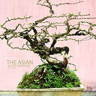 The Asian (Original Mix)