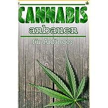 Cannabis anbauen: Cannabis anbauen für Anfänger