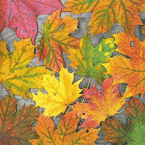 ᐅᐅ Herbstlaub Blätter Blumen Test Vergleich Nov