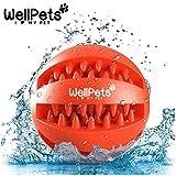 Premium Hundeball 2 Stück | Hundespielzeug Ball aus Naturkautschuk mit Zahnpflege Funktion