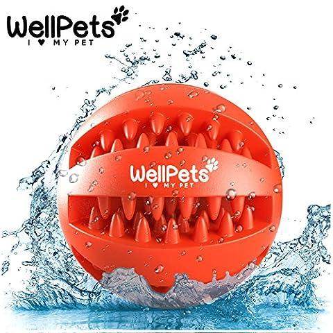 Premium Hundeball 2 Stück | Hundespielzeug Ball aus Naturkautschuk mit Zahnpflege Funktion | BONUS: 1 Gratis Ebook Hundetraining | Snackball & Dentalball ideal für Große & Kleine Hunde sowie zahnende Welpen | Kräftiger Kauspaß mit DentaClean Technologie | Set: Ø 7 & 8cm | Spielzeug für Hunde aus Natur-Gummi | Spielball Robust & Langlebig mit Loch für (Aktion Welpen)