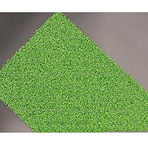 WENZHE Golf Tapis De Putting Formation Herbe Verte Haute Densité