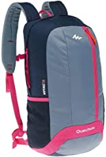 Quechua 20 Ltr Grey-Purple Trekking Backpack