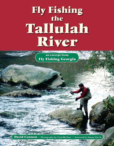 Fly Fishing the Tallulah River: An Excerpt from Fly Fishing Georgia (No Nonsense Fly Fishing Guidebooks) por David Cannon