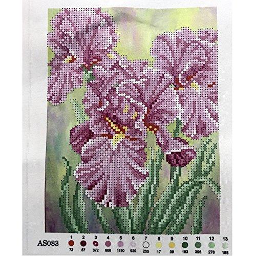 Unbekannt Perlenstickerei Komplett Set Iris 25x19cm 0616-1
