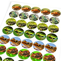Chunky Hamster Frogs, Reward Sticker Labels, Children, Parents, Teachers