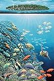 infactory Puzzle für Puzzlefan: 500-teiliges Glow-in-the-dark-Puzzle Unterwasserwelt (Puzzle als Spielware, Spielzeug)