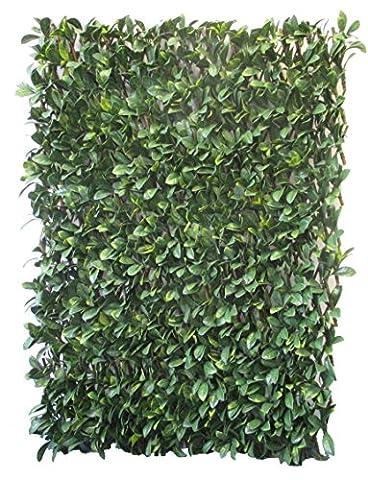 Haie de Laurier sur Treillage naturel bois de saule rigide Extensible sur mesure type haie artificielle Brise vue PVC Vert/Jaune/Marron 200 x 7 x 100 cm