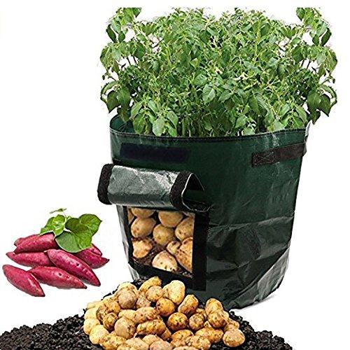 Quanjucheer 2 pcs 7 Gallon jardinage Corps Pot de fleurs balcon Maison Plant de pommes de terre aux plantes à nourriture support Seau 35cm x 34cm Green