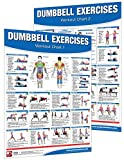 Productive Fitness Dumbbell Workout Poster/Chart Set