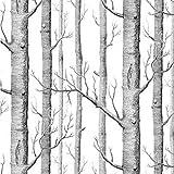 Caractéristique Noir et blanc Arbre Grain en PVC papier mural, pour chambre à coucher, salle d'étude, Store, anti-pollution antibactérien , non Autocollant Papier peint, 0.53* 10m