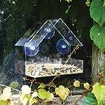 King Fisher Window Bird Feeder 7