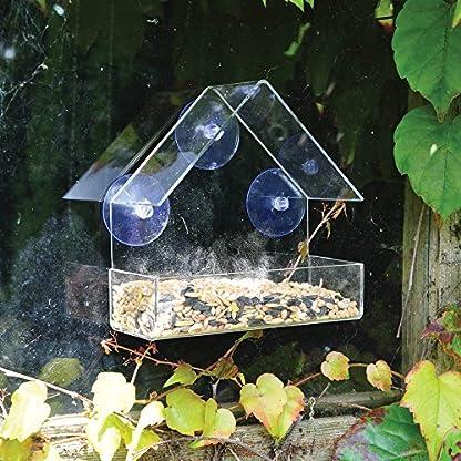 King Fisher Window Bird Feeder 3