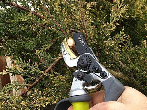 Pro Anvil Secateurs – Less Effort – Strain Reducing Garden Pruner – Protects Fingers, Ergonomic Premium Comfort & Quality, Razor Sharp for Precise Cuts, Long Lasting Gardening Hand Pruning Tool!