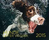 Hunde unter Wasser 2015: Wandkalender