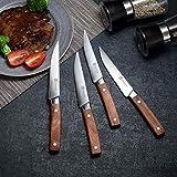 PAUDIN Steakmesser Set 4-teilig, hochwertige scharfe Messer Wellenschliff Steakmesser aus deutschem rostfreiem Edelstahl mit Ergonomischem Griff - 4