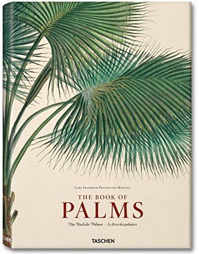 XL-MARTIUS BOOK OF PALM