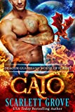 Cato: House of Flames (Dragon Guardians  Book 4) (English Edition)