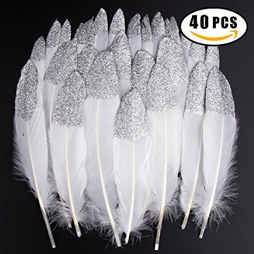 �ck Silber getauchtes natürliches Weiß Gänsefedern, ideal als Dekoration zum Karnival für Halloween Fest Masken, Kostüme und Basteln für Kinder, Sicher und Ungiftig und Nicht verblassen(Silber) (Silber Masken)