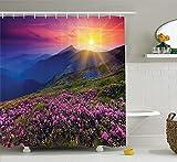 Best DECO FAIRY® En Natures - Nature Landscape Decor Collection, Magical Fairy Horizon Review