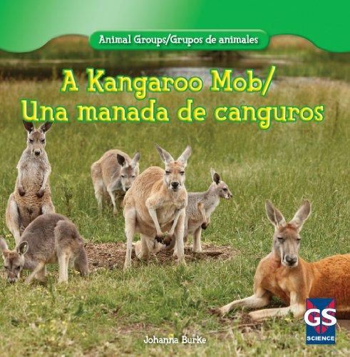 A Kangaroo Mob / Una manada de canguros (Animal Groups / grupos de animales) por Johanna Burke