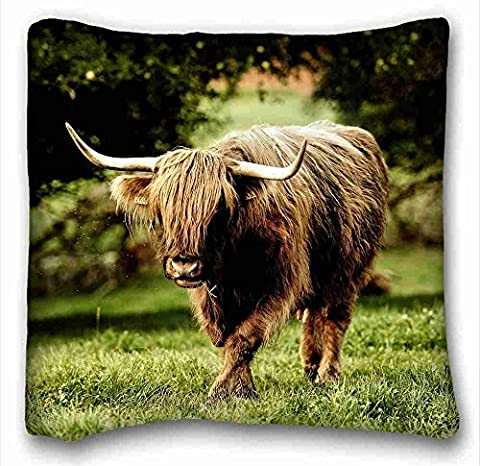 Generic Personalized ( Animals buffalo bulls grass walk horn ) Pillow Cushion Case Cover One Sides Printed 16x16 Inches suitable for Twin-bed PC-Red-443