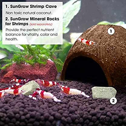 SunGrow Coco Shrimp Cave, 5x3 Inches, Coco Hut, Comfortable Hideout for Crustaceans, Perfect Breeding Area, Promotes… 5
