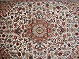 Awesome Sun Medaillon Beauty Floral Oriental Bereich Teppich Hand geknotet Wolle Seide Teppich (6x 4) '
