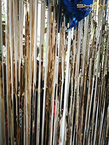 shinybeauty® Lametta Folie Fransen backdrop-6ftx8ft-silver Tür Fenster Vorhang/Hintergründe für Hochzeit/Geburtstag Party Dekoration, champagnerfarben, 6FTX8FT