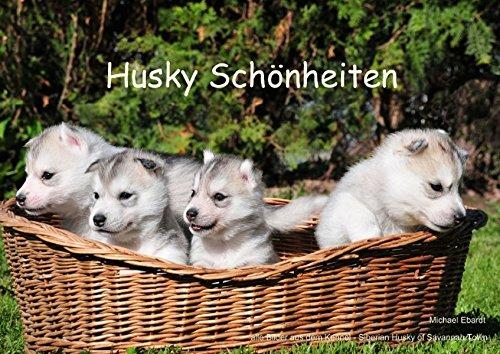 Eis Angeln Kalender (Husky Schönheiten (Posterbuch DIN A3 quer): Der Husky in einer seiner schönsten Typart und Farbe. (Posterbuch, 14 Seiten) (CALVENDO Tiere) [Taschenbuch] [Jan 09, 2014] Ebardt, Michael)
