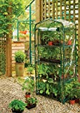 Grow it 08711 Replacement Grow House Clear Cover Bild 2