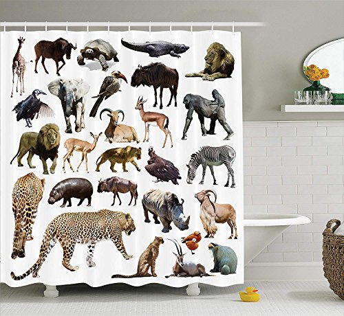 Tall Leopard (African Decorations Collection, Set of Leopard and Other African Animals Wild Life Creatures of Nature Lion Artsy Image, Polyester Fabric Bathroom Shower Curtain, 60 x 72 Inches, Multi)