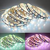 LEDENET RGB+W+WW Flexible LED Strip Lighting Color Changing Color Temperature Adjustable Cold White Warm White CCT RGB LED Tape Ribbon Lamp 5m 16.4ft Long Non-waterproof