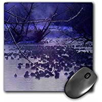 Sandy Mertens Wisconsin - Canada Geese on Lake at Mequon - MousePad (mp_41208_1)